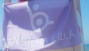 bandiera lilla pomezia