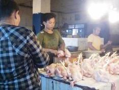Jelang Tahun Baru, Harga Daging Masih Normal