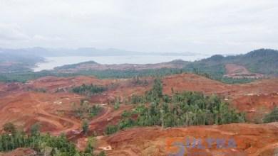 Photo of Walhi : Ratusan Hektar Hutan Lindung di Konut Rusak Akibat Tambang Ilegal