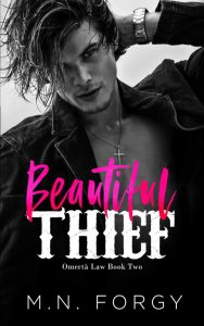 Beautiful Thief by M.N. Forgy Release & Review