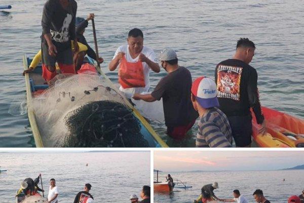 Gubernur Olly Turun ke Laut Beli Ikan Segar dan Memasak Sendiri