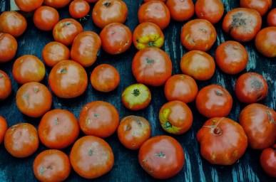 Tomatoes for sale in a little trailer, roadside