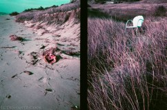 Where Halloween balloons and forgotten things end up, Olympus Pen EE3, Lomography Lomochrome Purple