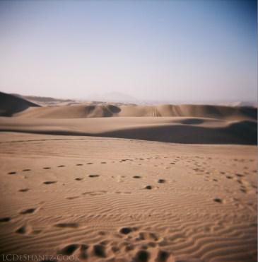Huacachina dunes, Kodak Ektar 100