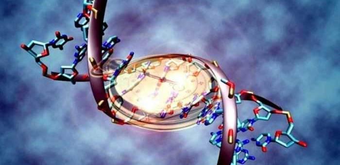 La meditación cambia la expresión de nuestros genes