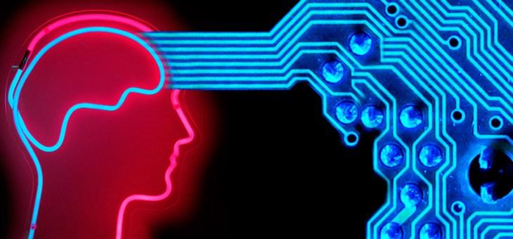 ¿Cómo será el cerebro humano del futuro?