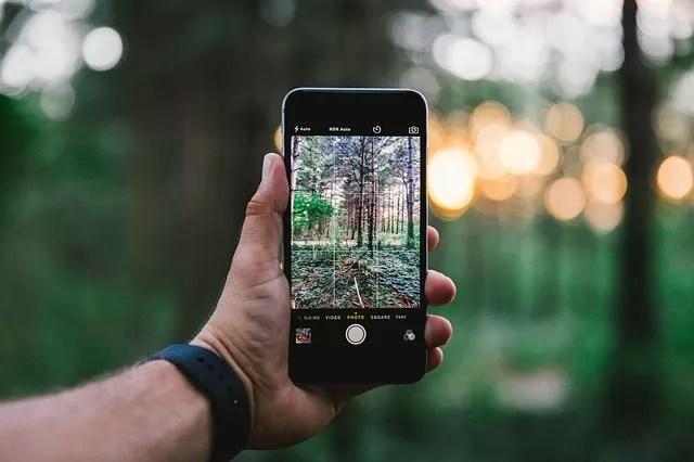 iPhoneで森を撮影する人