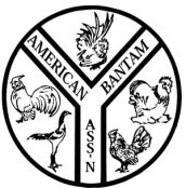 join_the_american_bantam_association_thumb_large_popup