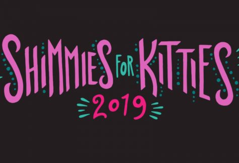 Shimmies for Kitties