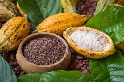 cocoa beans ( chocolate )
