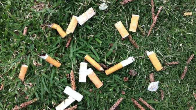 Cigarette Butts reducing the soil fertility.