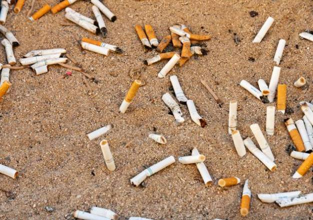 Cigarette Butts are polluting the environment.