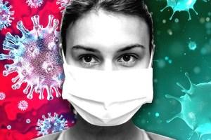 Corona Virus cases