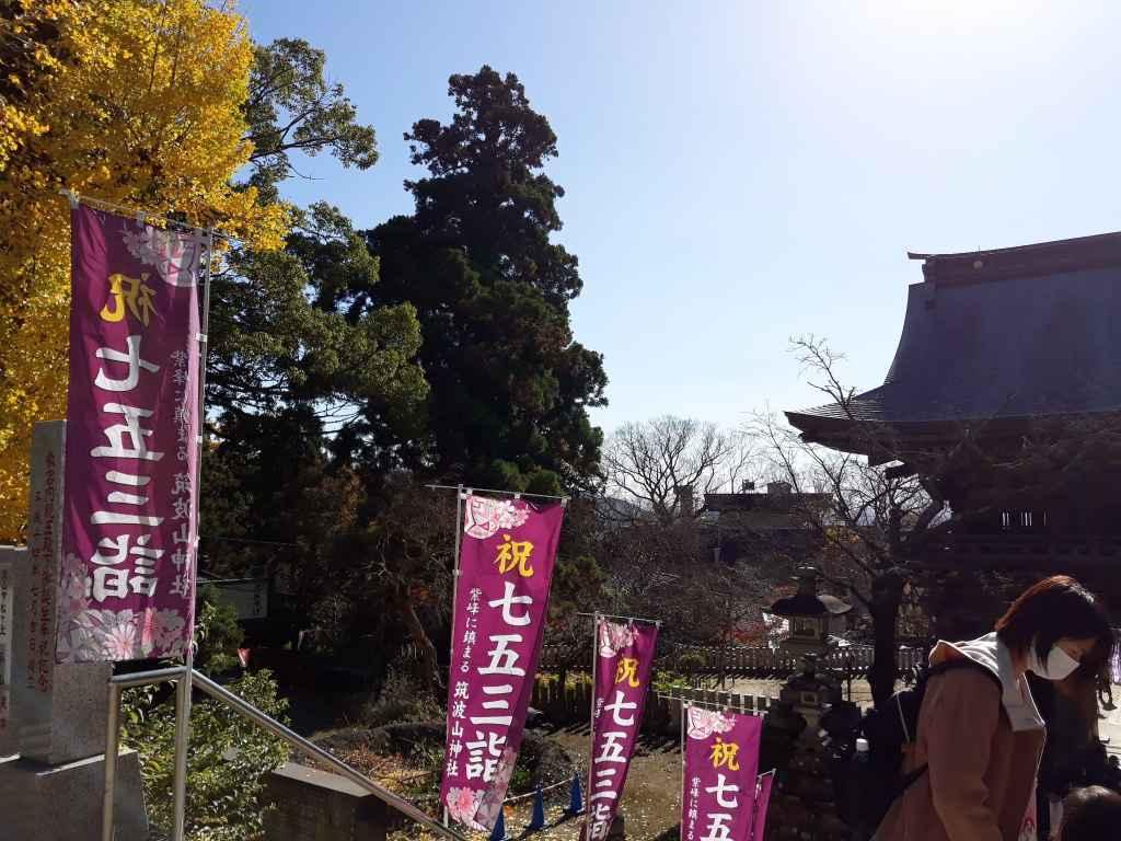 tsukuba_ginko