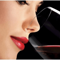 ¿Sabes distinguir los aromas en un vino?