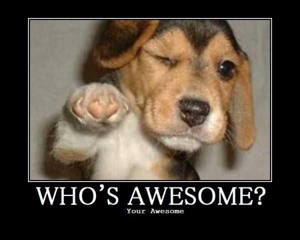 Aa_whos_awesome