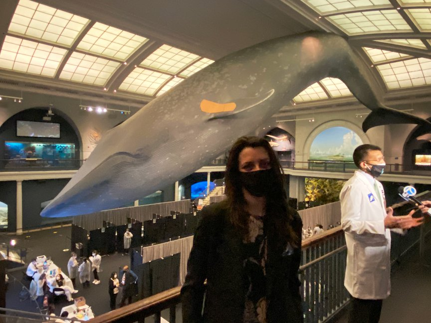 Celeste Carballo stands in front of the blue whale, with the bandage on its flipper