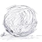 An Especially Strange Coconut