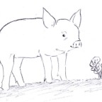 The Pig and the Radish