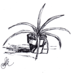 The Feral Plant