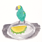 Charlie's Room: The Parrot