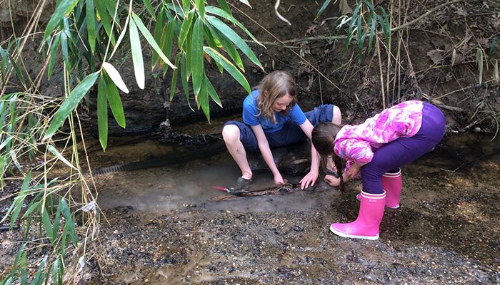 Campers investigate a stream