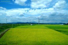 恋瀬川通過