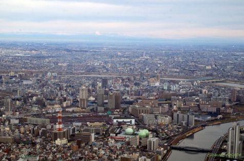 手前左:隅田川駅(南千住)、手前右:白髭橋、奥:日光連山