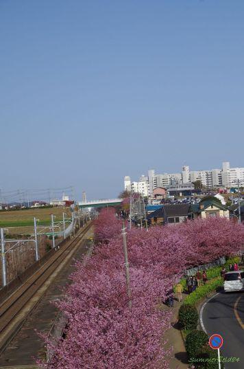 三浦海岸駅方面