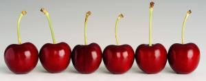 Cerezas summer fruit