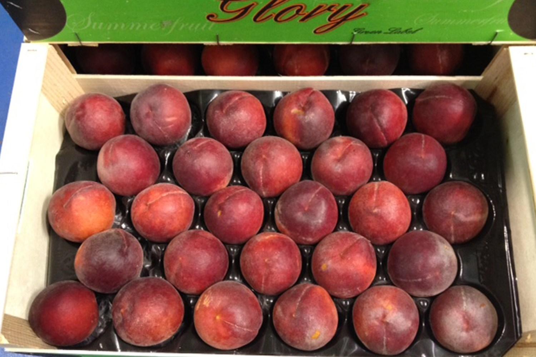 www.summerfruit.es España