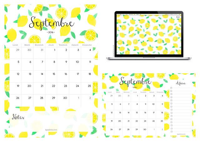 claire la paillette blog rennes graphiste illustratrice citrons papeterie lemons