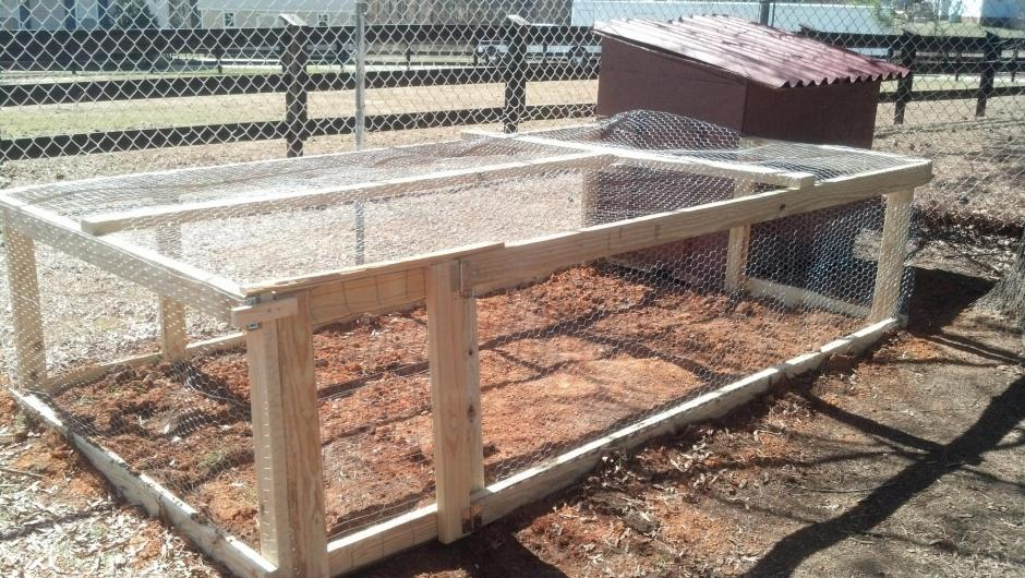 The Chicken Run Attached to the New Coop