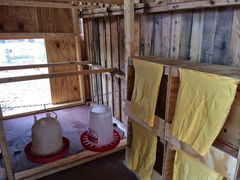 Backyard Brooder Box raising backyard chickens for eggs. part 2 - the brooder - summers acres