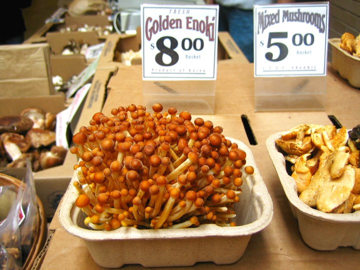 golden enoki mushrooms