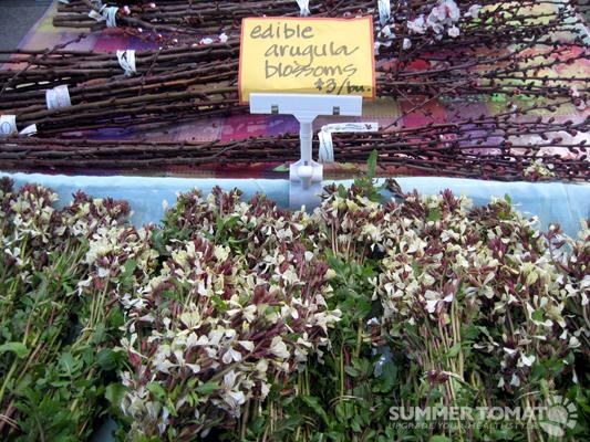 Arugula Blossoms