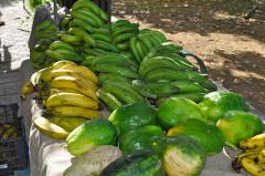 Green Papaya Green and Ripe Plantains