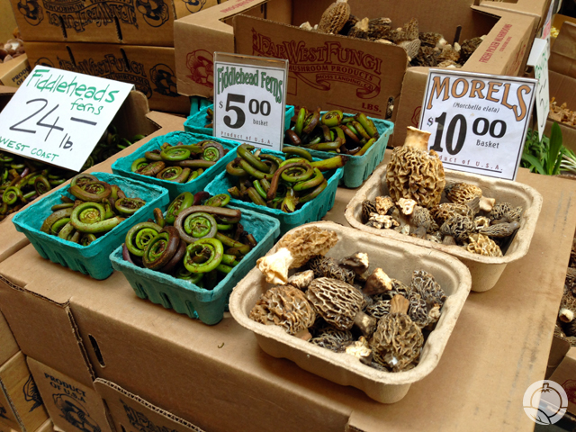 Morels and Fiddleheads