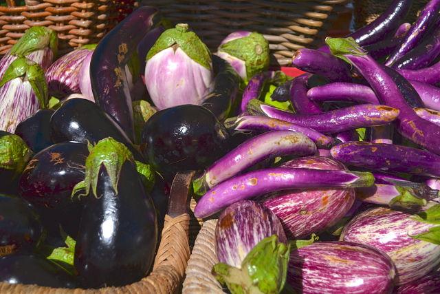 Eggplant Variety