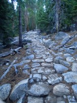 The beginning part of the Half Dome Trail.