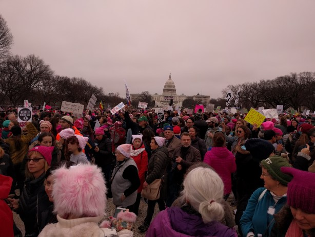 us-capitol-and-womens-march