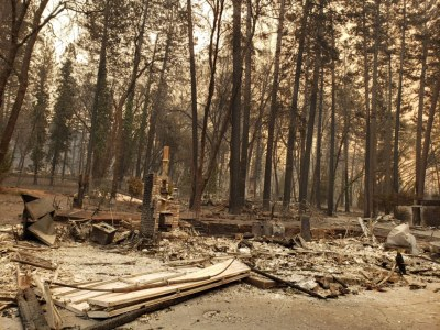 wildfire3.JeanetteKrzyzek