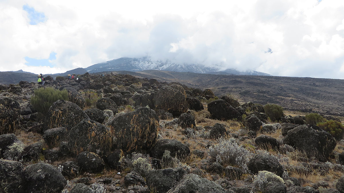 Machame Route 7 Days trek