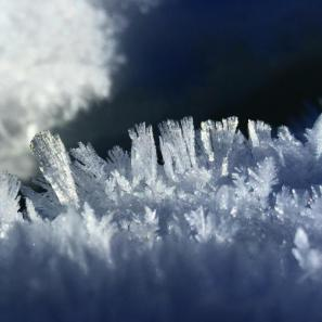 Frost crystals growing on the edge of a crack in the ice of Dillon Reservoir.