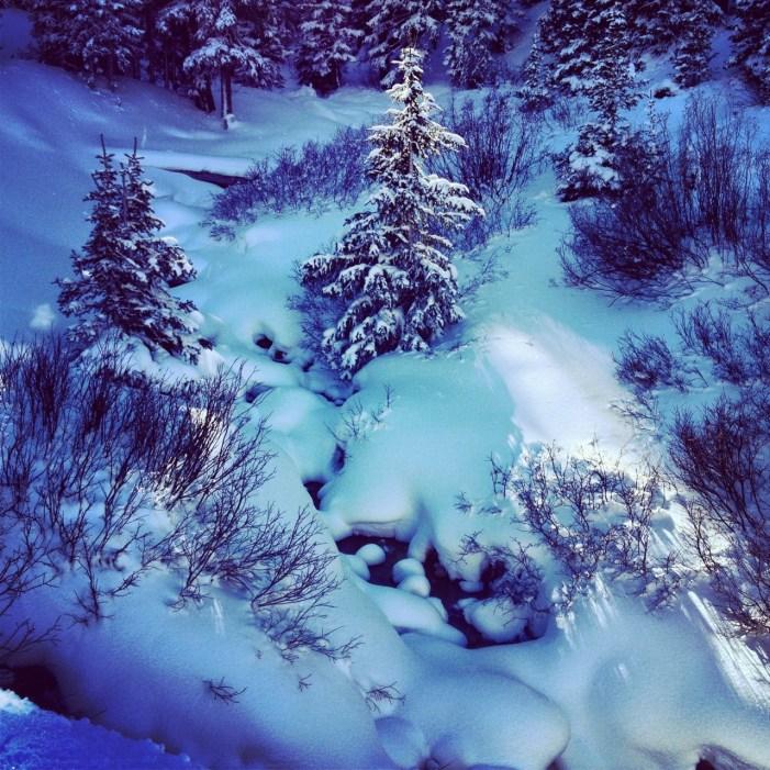Blue winter light along the headwaters of Clear Creek.
