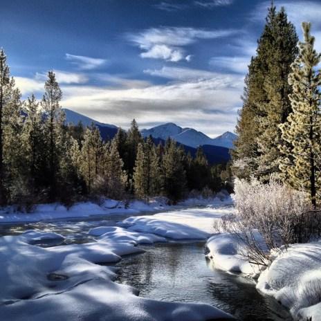 Winter stillness.
