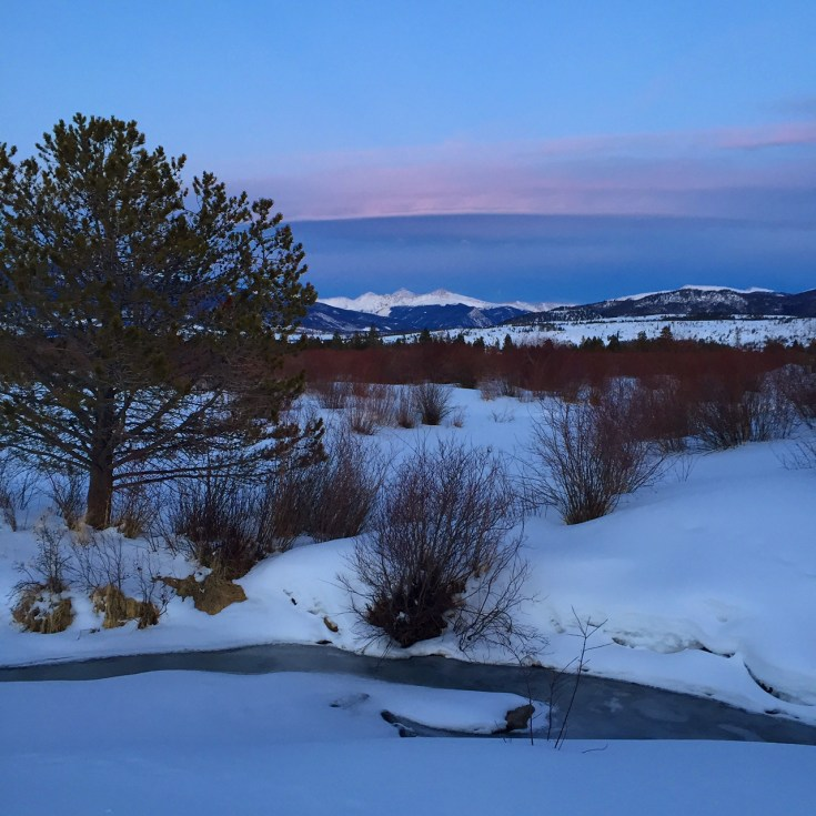 Twilight along Meadow Creek.