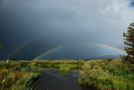 Rainbow, interrupted!