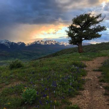 Gore Range view.