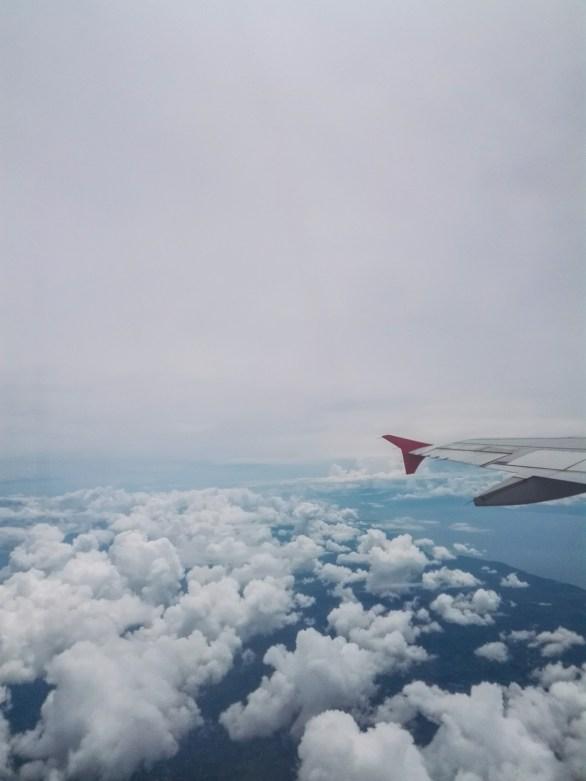 Fly...